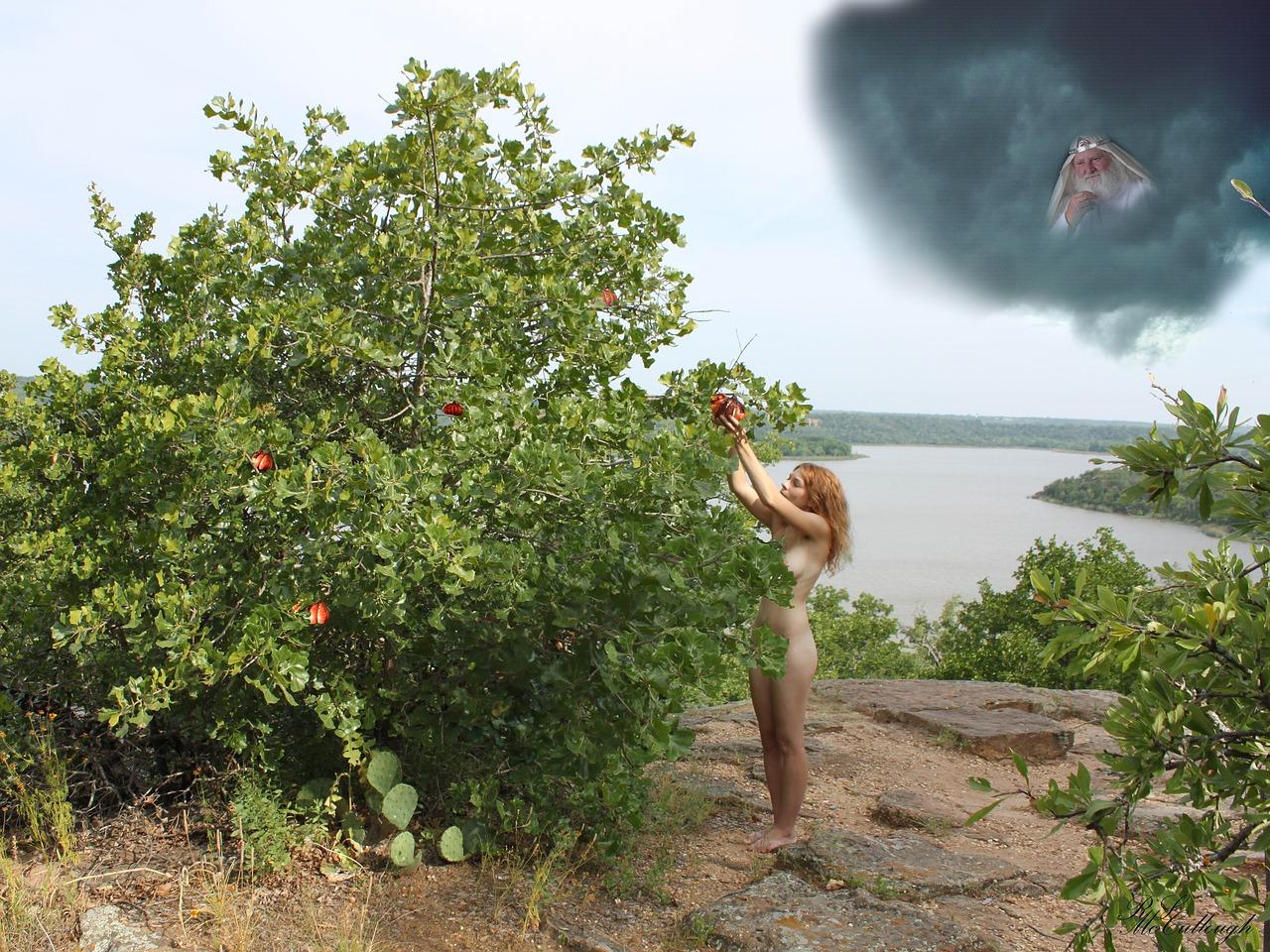 06. 生命の果実(Fruit of Life)